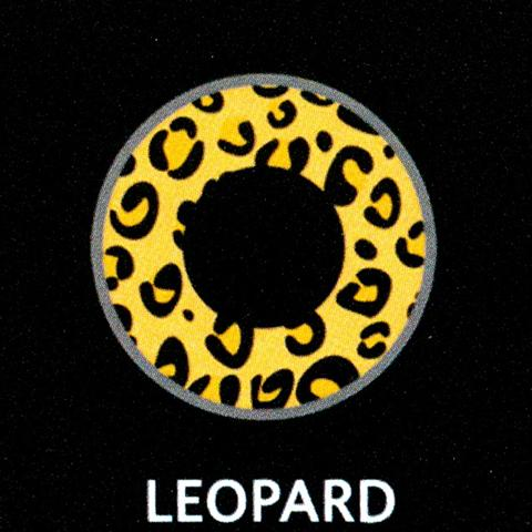 Daily Leopard